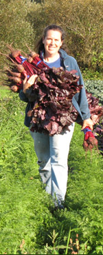 FarmGirl harvesting beets
